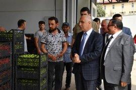 Vali Karahan Honaz İlçesini Ziyaret Etti