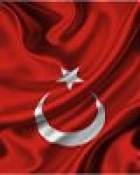 Türkçe  Bakış